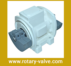 Foot Mounted Vibratory Motor